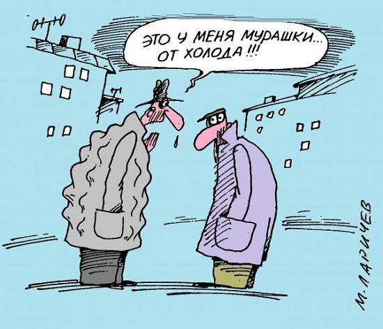 Read more about the article Свежие анекдоты смешные до слез