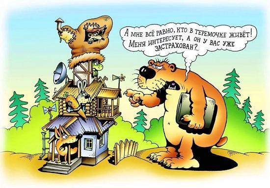 смешные истории про животных