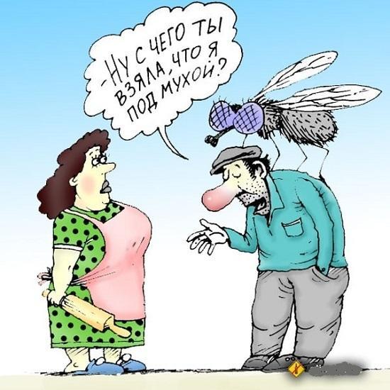 анекдоты про слова и жену