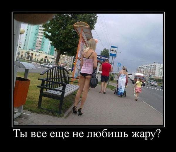 смешное лето на фото