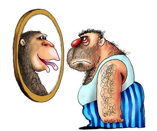 анекдоты про человека и обезьяну