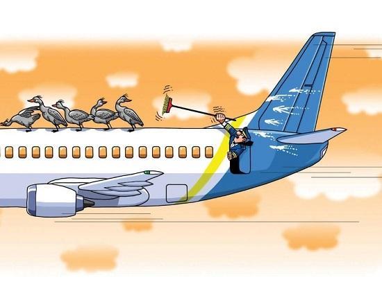 анекдоты про самолеты и пилотов