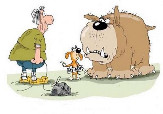 анекдоты про мужика и собаку