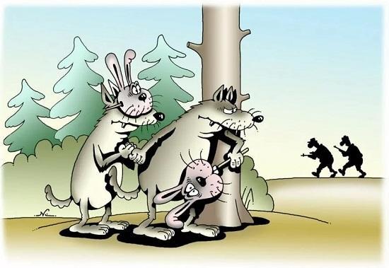 анекдоты про волка и лес