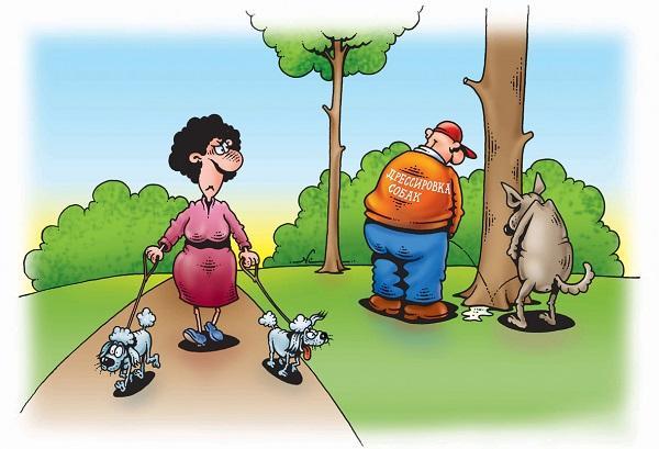анекдоты про человека и собак