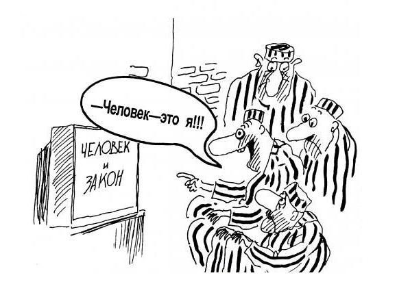 анекдоты про человека и законы