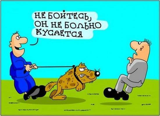 анекдоты про хозяев и собак