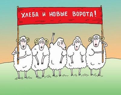 анекдот картинка про барана и овцу