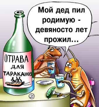 анекдот картинка про насекомых