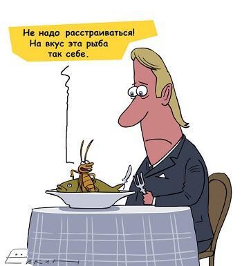 анекдот картинка про тараканов