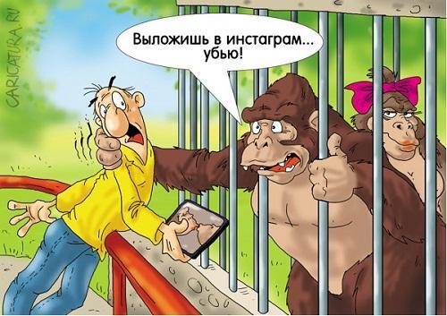 анекдот картинка про животных