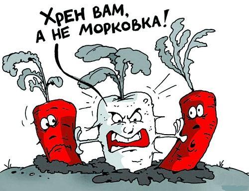 Анекдоты про овощи и фрукты в картинках