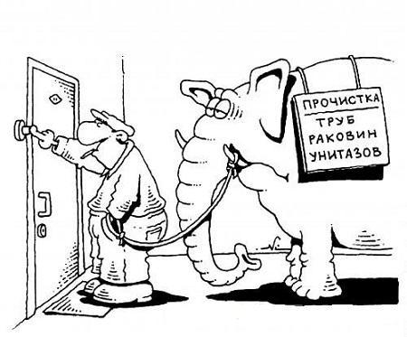 анекдот картинка про слона