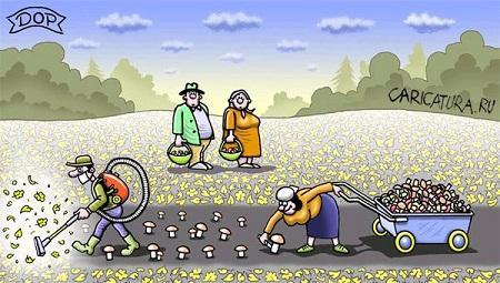 анекдот картинка про грибы и грибников