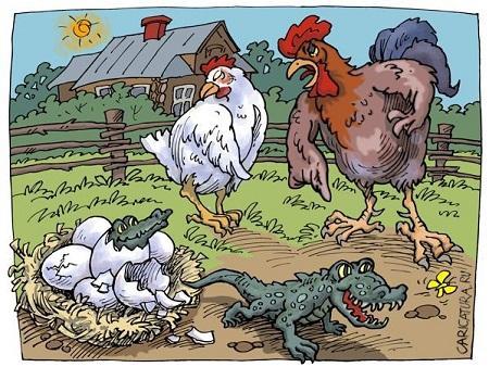 анекдот картинка про яйца