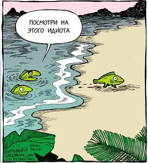 анекдот картинка про рыбу и раков
