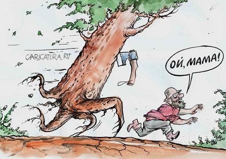 анекдот картинка про деревья