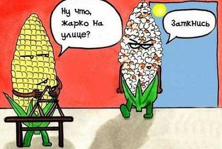 анекдот картинка про месяцы