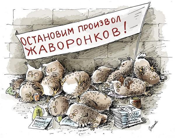 Read more about the article Анекдоты про сов и жаворонков