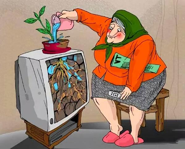 Бабушкины анекдоты