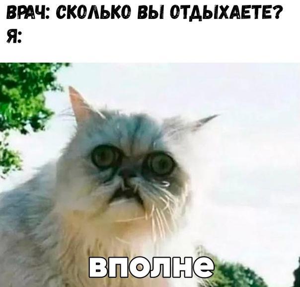 Смешные свежие мемы 19.04.2021