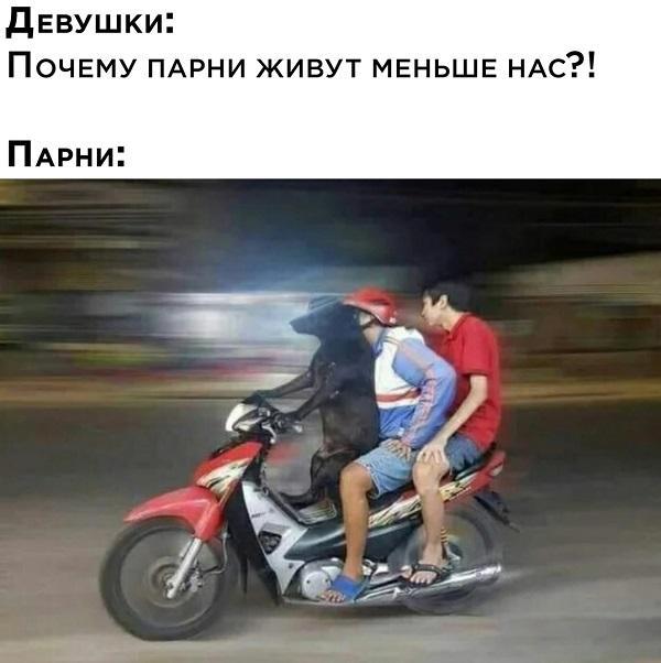Read more about the article Смешные свежие мемы 29.04.2021