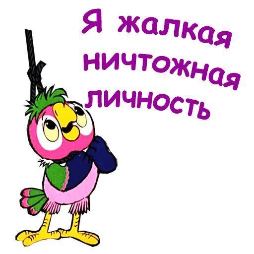 Попугай Кеша - мемы
