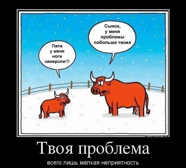 Анекдоты на демотиваторах