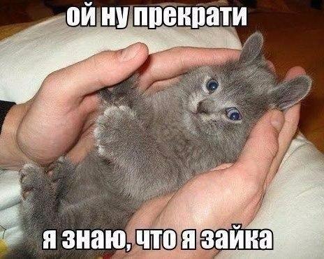 Смешные свежие мемы 21.06.2021