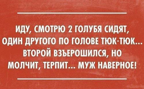 Read more about the article Смешные свежие шутки 25.06.2021
