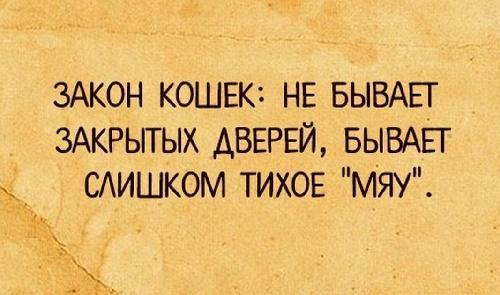 Read more about the article Смешные свежие шутки 27.06.2021