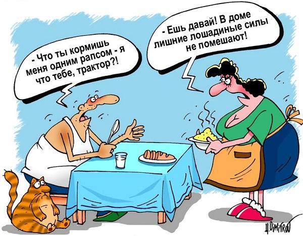 Read more about the article Подборка свежих смешных анекдотов №647