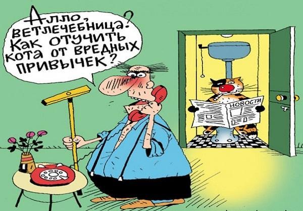 Подборка свежих смешных анекдотов №654