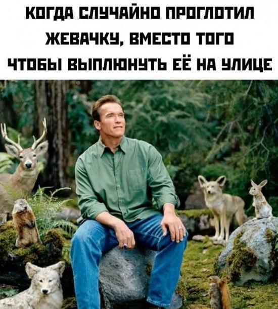 Read more about the article Смешные свежие мемы 05.07.2021