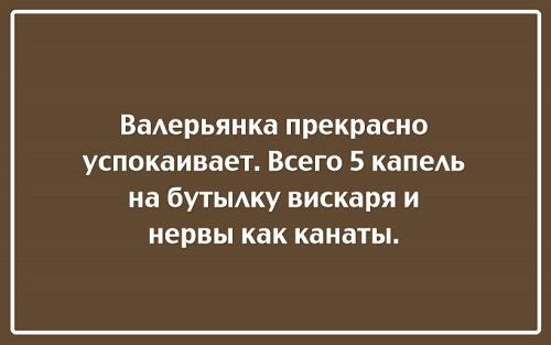 Read more about the article Хорошие прикольные до слез шутки