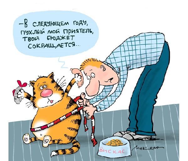 Read more about the article Прикольно: читать новые ржачные анекдоты