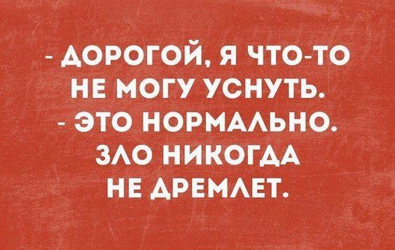 Read more about the article Свежие забавные шутки