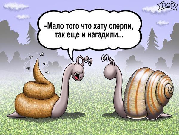 Read more about the article Подборка свежих смешных анекдотов №679