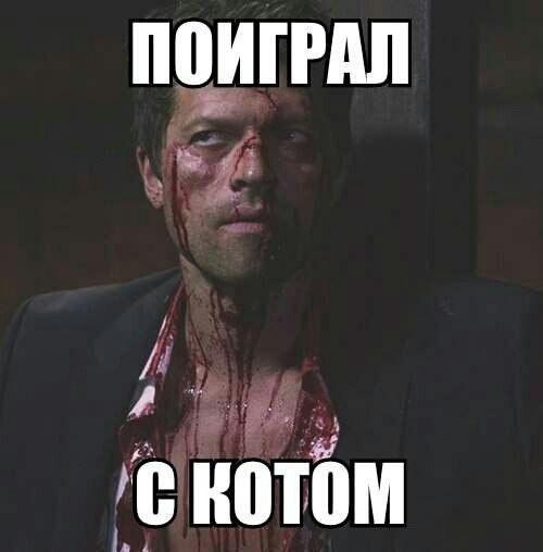Read more about the article Свежие смешные до слез мемы вторника