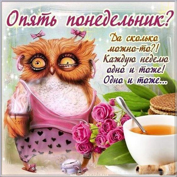 Read more about the article Смешно про понедельник