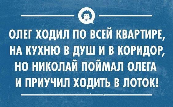 Read more about the article Читать свежие ржачные до слез шуточки