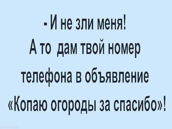 Read more about the article Читать свежие самые смешные шуточки