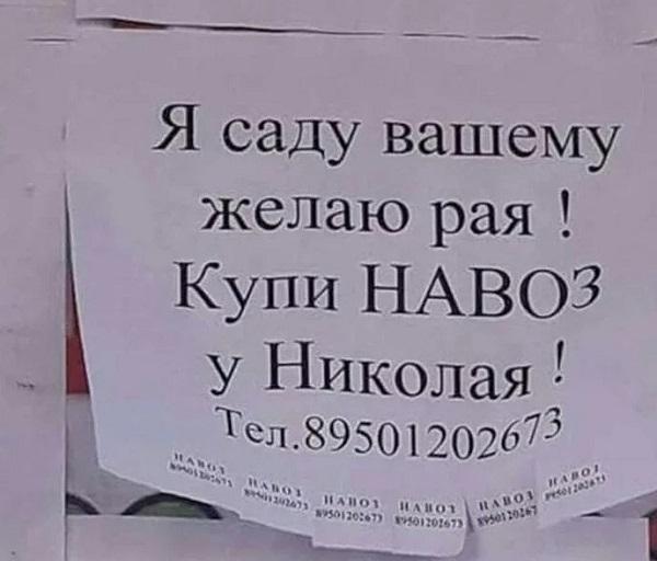 Read more about the article Ржачные объявления