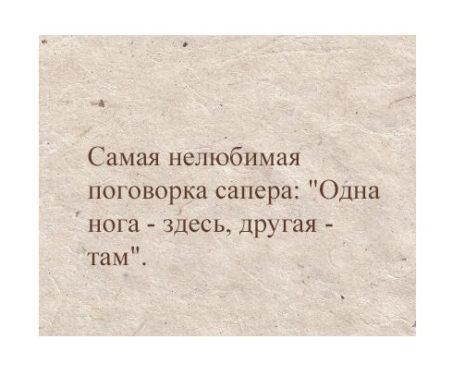 Read more about the article Смешные до слез поговорки