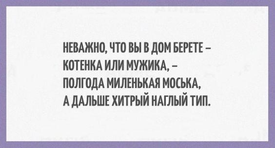 Read more about the article Свежие очень смешные шутки вторника