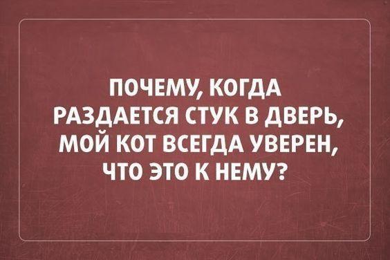 Read more about the article Свежие смешные шутки вторника