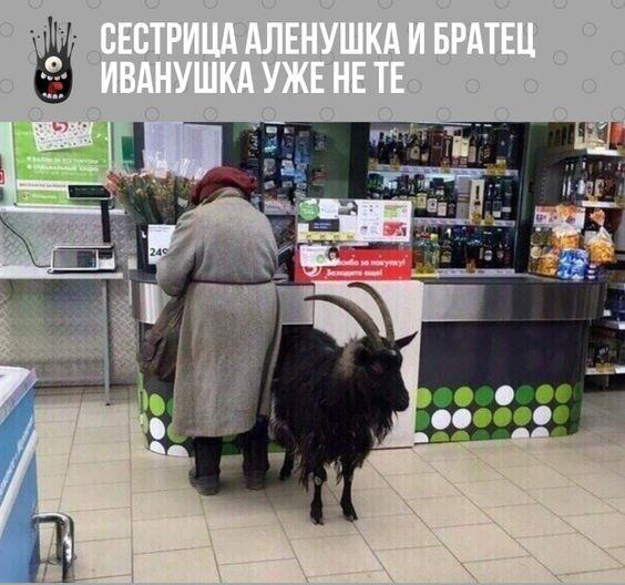 Read more about the article Прикольные до слез картинки с надписями четверга