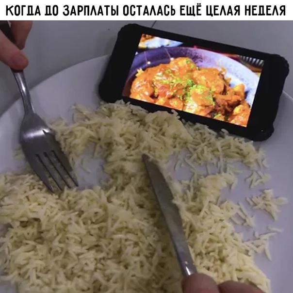 Read more about the article Свежие прикольные до слез мемы воскресенья