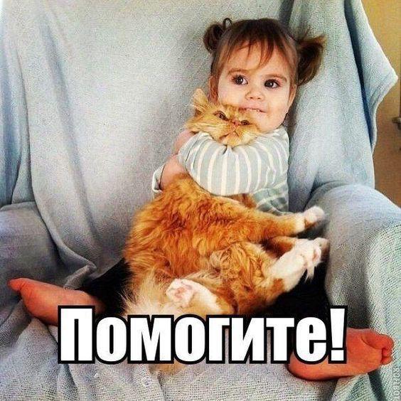 Read more about the article Свежие прикольные до слез мемы понедельника