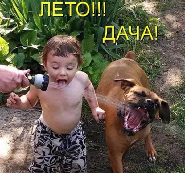 Смешные дети на картинках